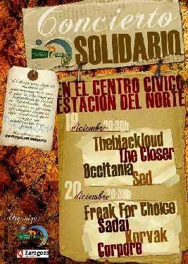 20081205152310-conciertosolidario.jpg