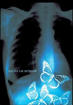 20070314124829-mariposas.jpg