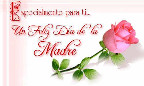 20100502081855-rosa-para-una-madre.jpg