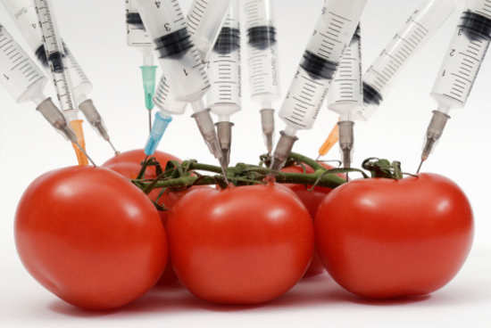 20120119094649-tomates.jpg