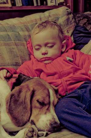 20160726145116-dormir-con-perros.jpg