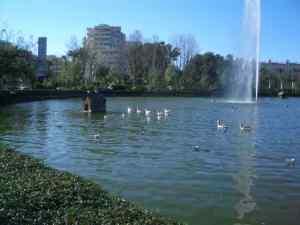 20090115132708-estanque1.jpg