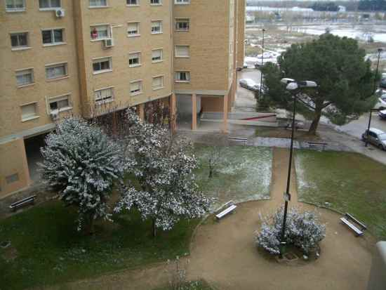 20091221104011-jardin.jpg