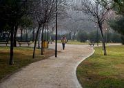 20080127134621-parque.jpg