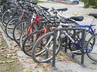 20120320152922-bici-neweb.jpg