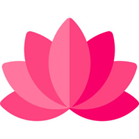 Blog sobre Plantas de interior y Jardinería