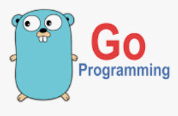 20190201000133-go-language-programming.jpg