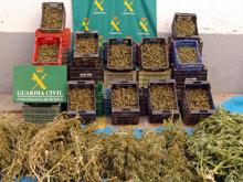 20071025140532-cajas-marihuana.jpg