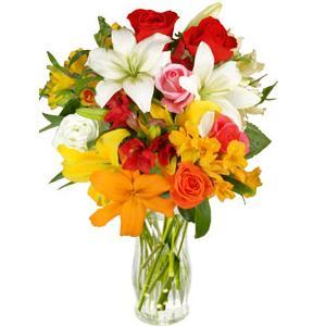 20080504092710-flores-zaragoza.jpg
