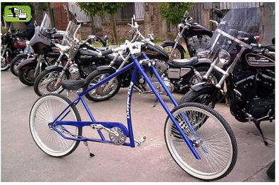 20080506083126-zaragoza-bicicletas.jpg