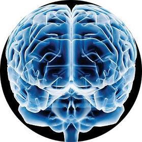 20081130161441-lista-de-tareas-a-recordar-cerebro.jpg