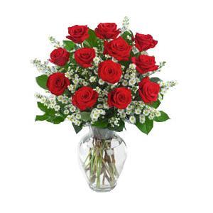 20081115172851-cuba-flores-12-rosas-rojas-enlarge.jpg